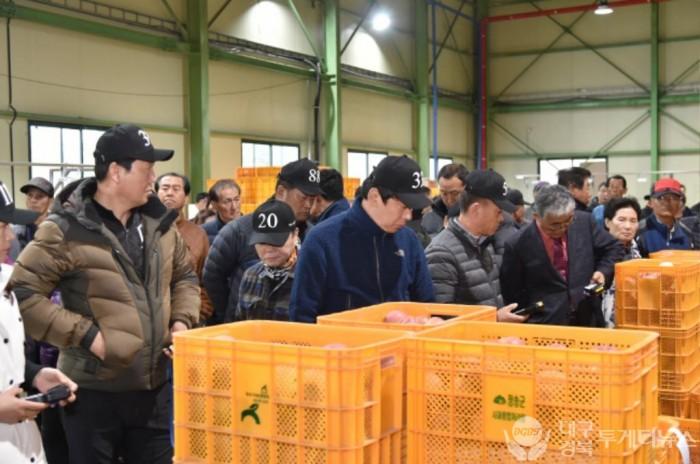 200626보도자료(청송군, 농산물공판장 출하농가 선별수수료 지원) (2).JPG