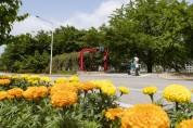 예천군, 사계절 꽃으로 덮인 가로경관 조성